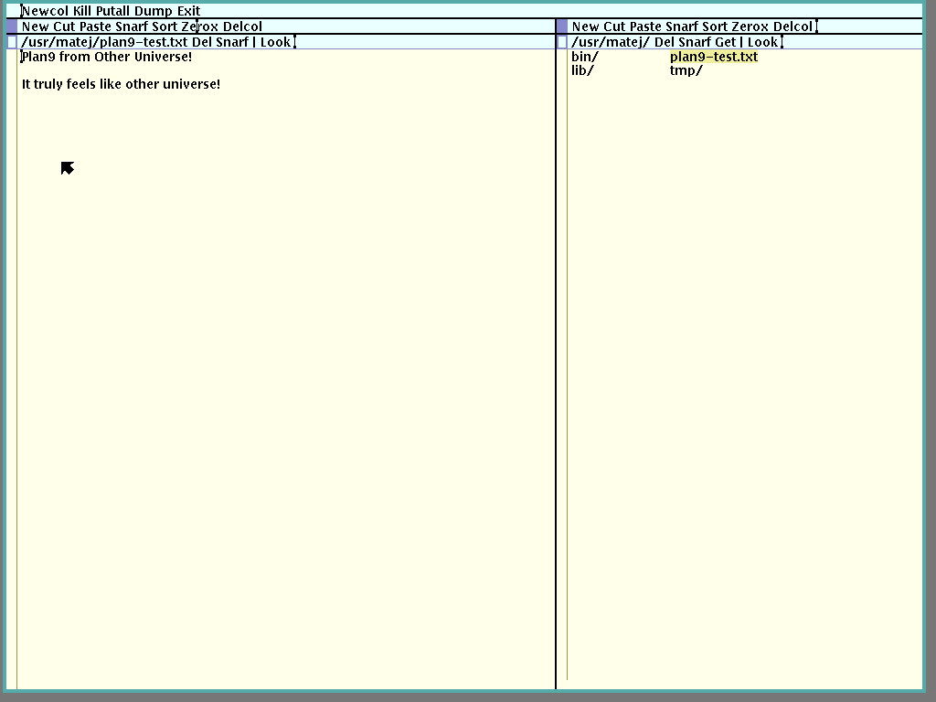 screenshot of Plan 9 desktop